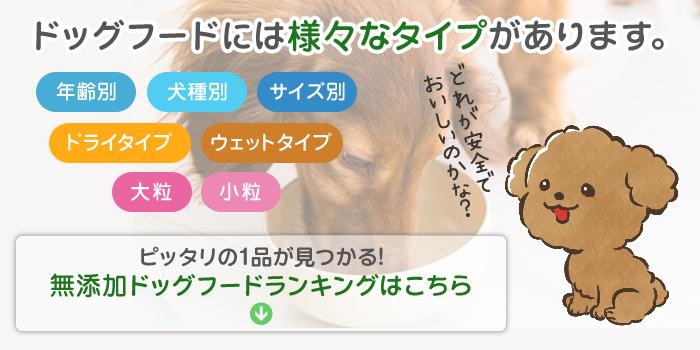 無添加ドッグフードランキング|サイズ・犬種別|高人気・高評価