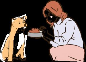 愛犬には安全なドッグフードを食べさせてあげたい